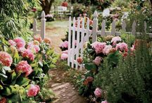 White Picket Fence Garden