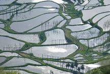 asie / paysage