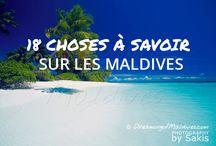 Choses à savoir sur les Maldives que vous ne connaissez pas !