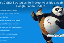 SEO Services in India / ExpertWebTechnology is one of the best internet marketing company in India. Expert Web Technology helps you to boost your website rankings on Google & traffic to your website.http://www.expertwebtechnology.com/search-engine-optimization.html