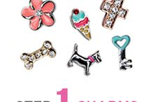 Beth Lockhart's Origami Owl Jewelry Bar / Beth's pins of items that she would like to get for free or discounted when she hosts an Origami Owl Jewelry Bar on June 22.  If you would like to order and help Beth get free jewelry, go to www.EmilySigler.OrigamiOwl.com.  Remember to assign your order to Beth's Party.
