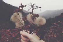 nature ^.^