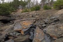 Paleontology / quarry photos