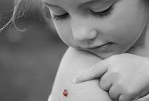ladybug ❦ lienka / lienka
