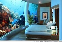 Room designs I love