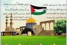 Free palestine / From the river to the sea palestine will be free