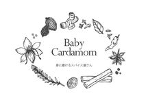 """Baby Cardamom Products / Japanese handmade accessory brand """"Baby Cardamom""""  All products are made of spice or foods."""