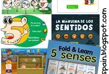2.3 Spanish Los Cinco Sentidos