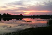 Register Family Farm Sunsets