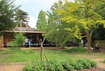 Cambridge University Botanic Garden / We built and designed a Garden Room at Cambridge University Botanic Garden