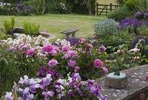 Gardens / Garden inspiration....