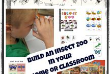 Insect Thematic Activities / Insect and bug thematic fun for kindergarten math, reading, social studies, art, music, writing, and science.