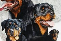 Celebrate the Rottweiler! / Celebrating all things Rottie