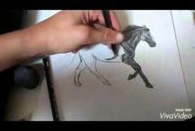 Pferde zeichnen Videos
