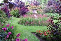 Garden patch / by Fuzz Pesock