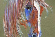Kresby, koně a příroda