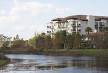 Orlando Resorts / The Orlando Marriott & Starwood resorts you'll find on VacationSmarter.com with listings for Vacation Rentals and Timeshare Resales