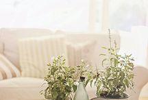 Healthy Living / by Elena Maltseva