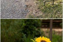 Sunflowers wedding decorations