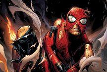 Spiderman'ragged