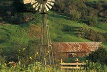 Barns / by terri mtcastle