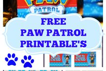 Linc paw patrol birthday party
