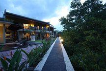 Jimbaran Inexpensive Hotels, Bali, Indonesia / Popular Jimbaran Inexpensive and Сheap Hotels, Bali, Indonesia. Hotels with Airport shuttle and Restaurant