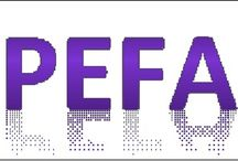 PEFA Assessment / We discuss issues relating to the Public Expenditure and Financial Accountability (PEFA) assessment methodology and assessments prepared using this methodology.