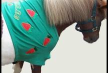 Custom made Animal clothing / by Debra Beard