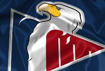 Slovan Bratislava  / hokejový klub