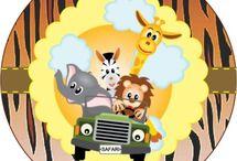 Safari do João