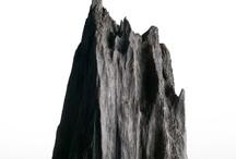 Bog Oak / The bog oak rests under water for centuries. Its unique black reflects the time print.
