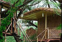 Tree House Hideways in India / India tree house hotels, apart from being unique places to stay, are an absolute delight if you're a nature lover. They range from luxurious to rustic, and are perfect for a romantic getaway or just relaxing in peaceful surroundings.