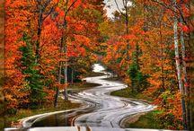 Seasons / by Deanna Smith-Powers