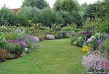 красивый двор / экстерьер дома