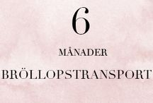 6 MÅN - Bröllopstransport