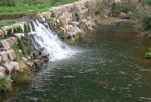 El rio de Borriol / Así se ve el rio a su paso por la localidad de Borriol, en primavera. Este año baja agua.