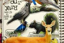 Nature Journal ideas