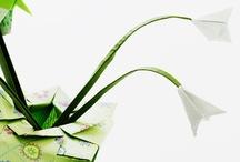paper crafts: ORIGAMI