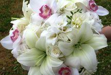 Flowers to Adore / by Gül Akkoca