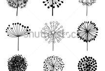 disegni in bianco e nero