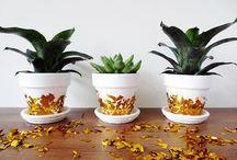 Flower Pot Decoration Ideas
