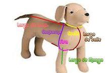 patrones para perro