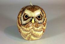 all things owl / by Jo Ann Slayton