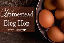 Homestead Blog Hop / Join us for our weekly homestead blog hop at essentialhomestead.com