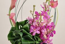 Flower arrangment / Flower