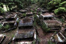 Abandon Car Cemetery