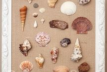 shell craft