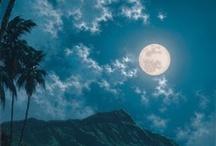 Hawaii: Travelers Paradise  / Beautiful travels / by Gwen