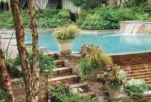 Backyard Living  / by Gina